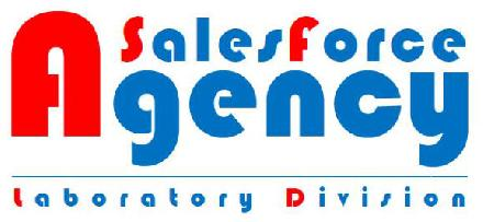 Sales Force Agency